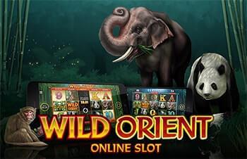 Wild Orient tragaperras