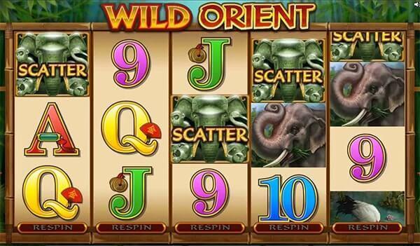 Bono Wild Orient tragaperras