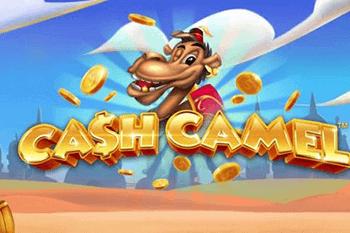 tragaperras Cash Camel