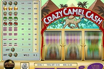 Crazy Camel Cash tragamonedas