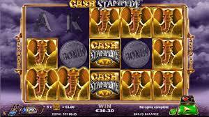 Slot Cash Stampede