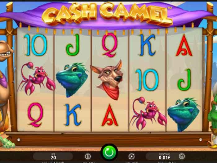 cash camel iframe